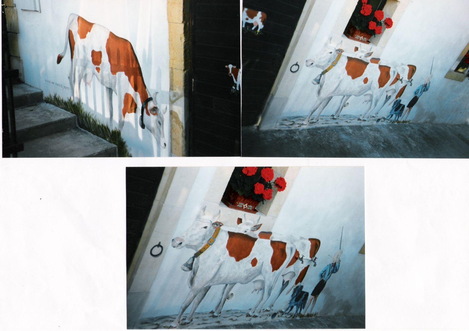 Fresque murale peinture acrylique trompe l 39 oeil d coration murale artiste - Fresque sur mur exterieur ...